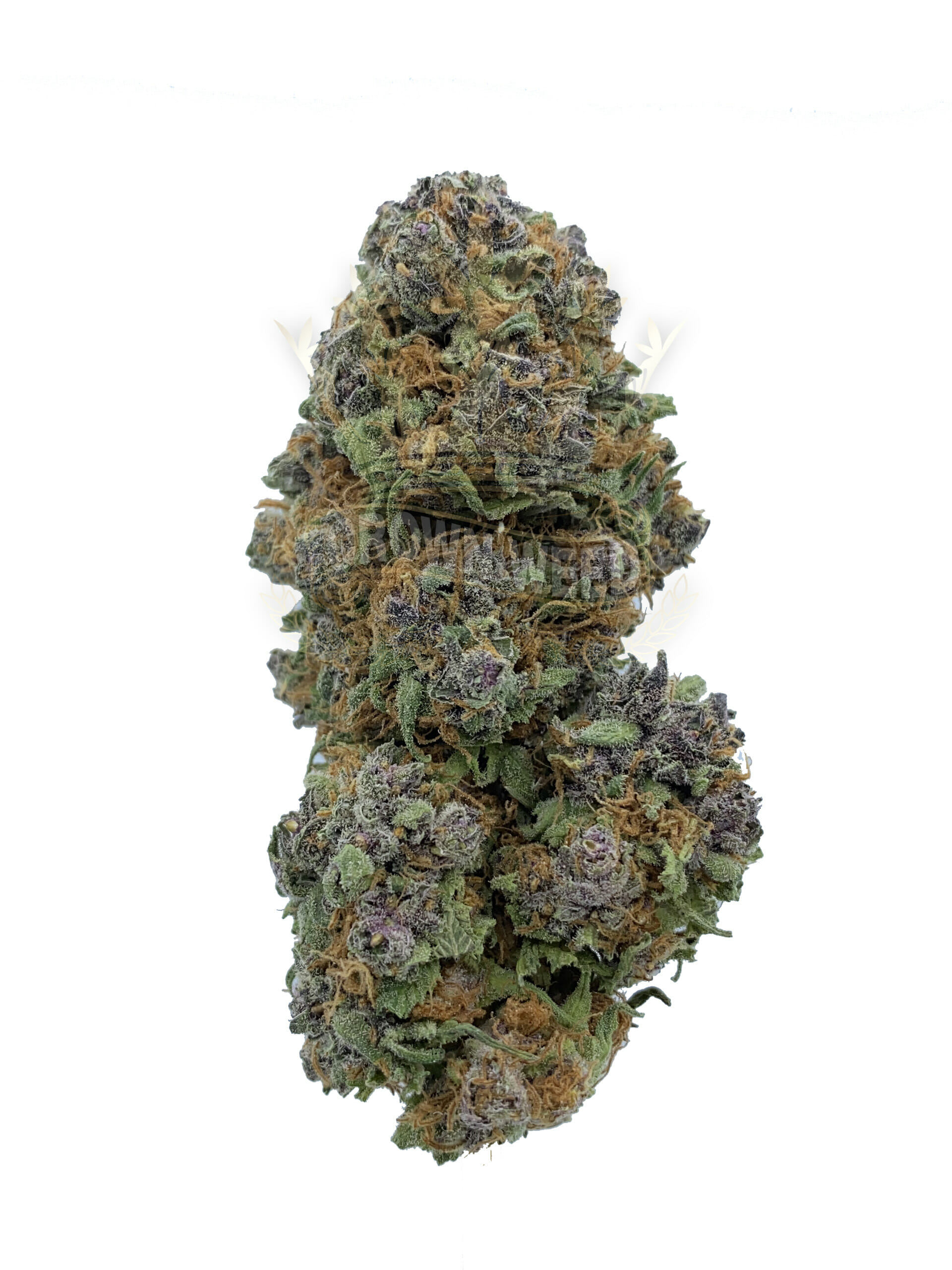 Guarantee the quality of your products in dispensary weed cannabis.