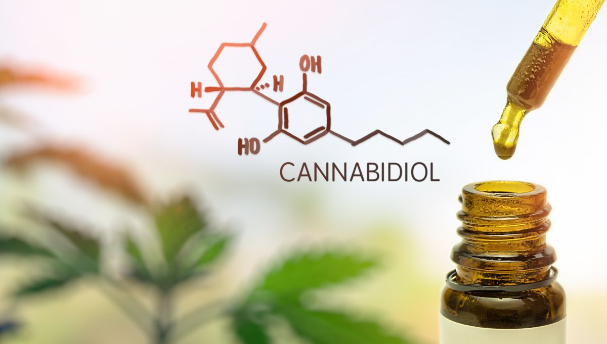 Discover how positive a Cbd flower (Fleur de cbd) can be so you can try it now